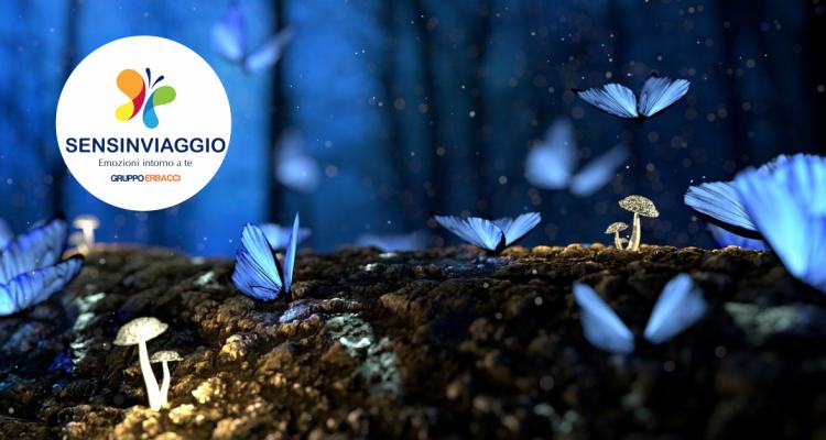 Sensinviaggio: l'udito al Micromondo e Musme